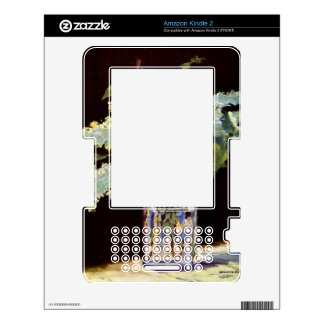 Still Life by Edouard Manet Kindle 2 Skins