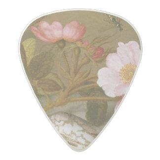 Still life depicting flowers acetal guitar pick