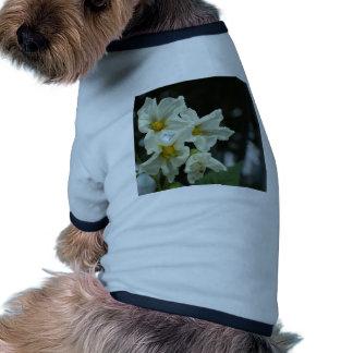 still life dog t shirt