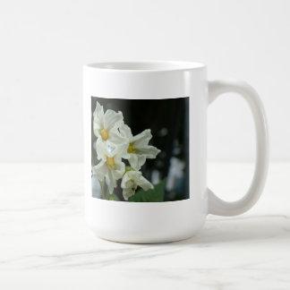 still life mugs