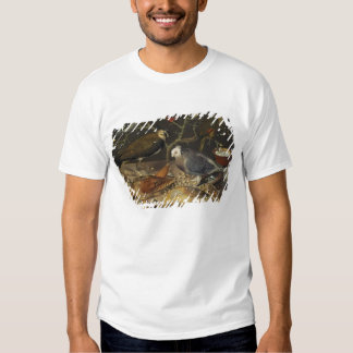 Still Life of Birds and Insects, 1637 T Shirt