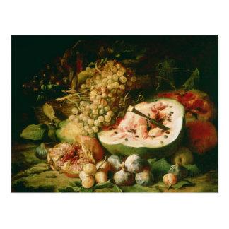 Still Life of Fruit on a Ledge Postcard