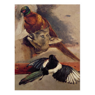 Still Life of Game c 1812-16 Post Cards