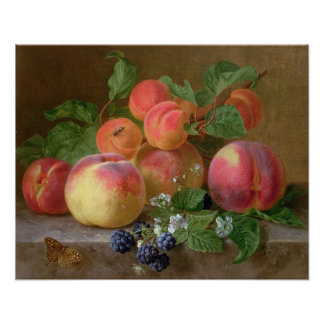 Still Life of Peaches Posters