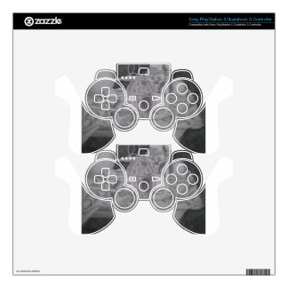 Still life skin for PS3 controller