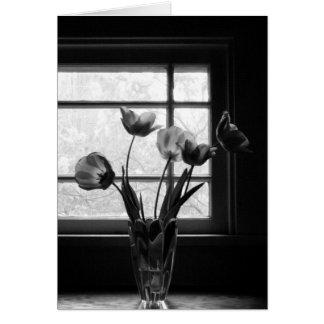 Still Life: Spring Tulips in Shadow Card