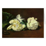 Still life, White Peony by Manet Greeting Card