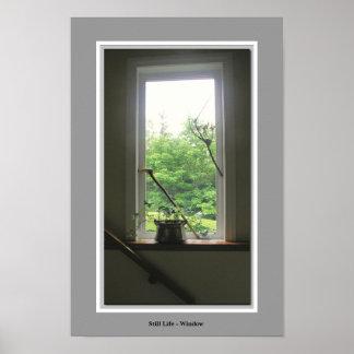 Still Life Window Poster