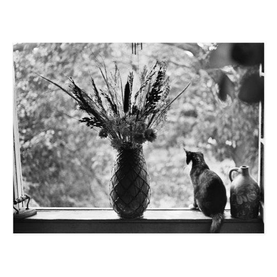 Still Life with Cat Postcard