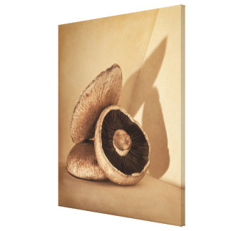 Still life with flat mushrooms and dramatic canvas print