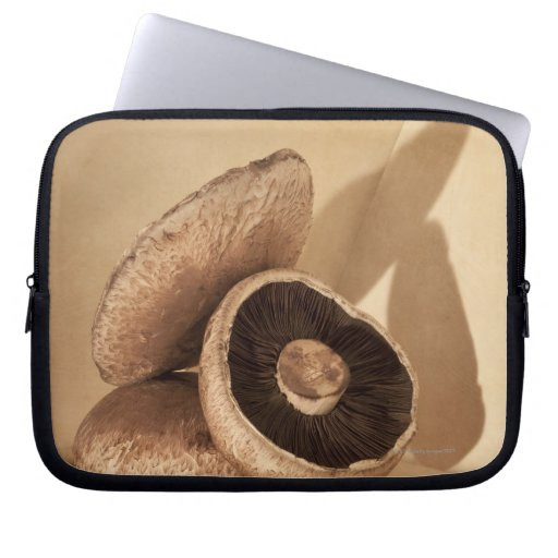 Still life with flat mushrooms and dramatic laptop sleeve