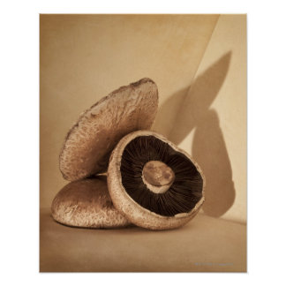 Still life with flat mushrooms and dramatic poster