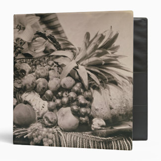 Still Life with Fruit, 1860 (sepia photo) 3 Ring Binder