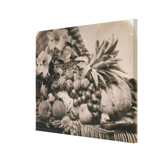 Still Life with Fruit, 1860 (sepia photo) Stretched Canvas Prints