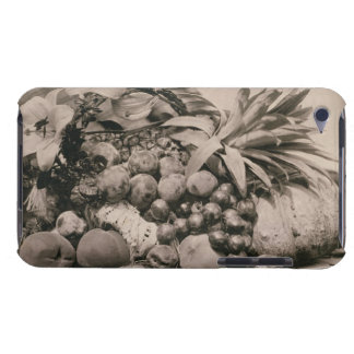 Still Life with Fruit, 1860 (sepia photo) Barely There iPod Case
