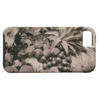 Still Life with Fruit, 1860 (sepia photo) iPhone 5 Covers
