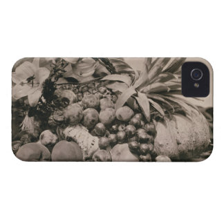 Still Life with Fruit, 1860 (sepia photo) iPhone 4 Case