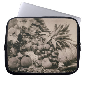 Still Life with Fruit, 1860 (sepia photo) Laptop Computer Sleeves