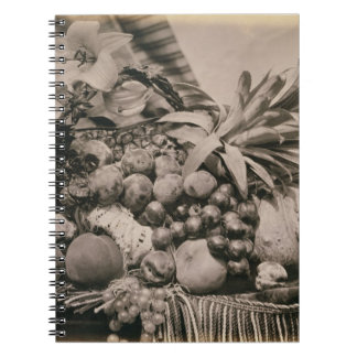 Still Life with Fruit, 1860 (sepia photo) Note Books