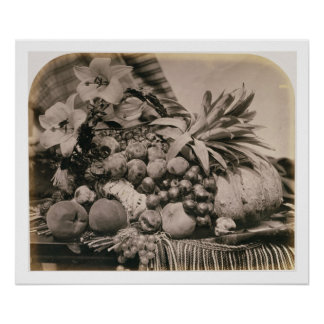 Still Life with Fruit, 1860 (sepia photo) Poster