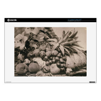 Still Life with Fruit, 1860 (sepia photo) Skin For Laptop