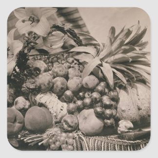 Still Life with Fruit, 1860 (sepia photo) Sticker