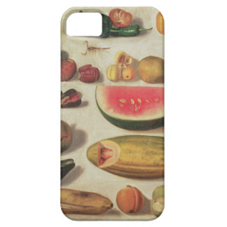 Still Life with Fruit and Toad iPhone SE/5/5s Case