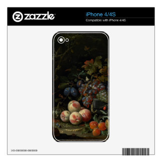 Still Life with Fruit, Foliage and Insects, c.1669 iPhone 4 Skins
