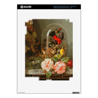 Still Life with Humming Bird in a Glass Dome iPad 3 Skins