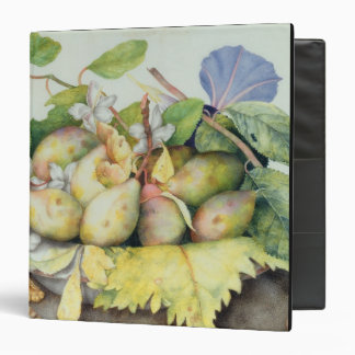 Still life with Plums, Walnuts and Jasmine (w/c on Vinyl Binder