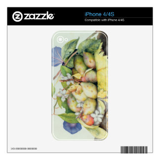 Still life with Plums, Walnuts and Jasmine (w/c on iPhone 4S Decal