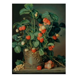 Still life with strawberries postcard
