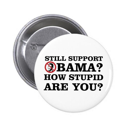 Still Support Obama? How Stupid Are You? Pin