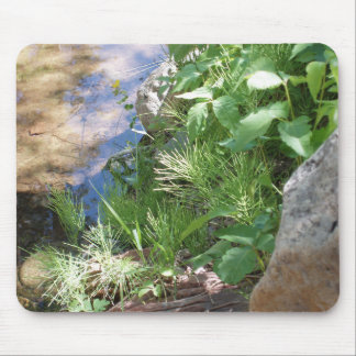 Still Waters Mouse Pad