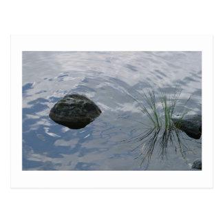 Still waters run deep postcard