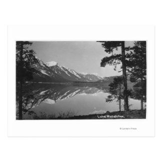 Stillwater Lake Scene Postcard