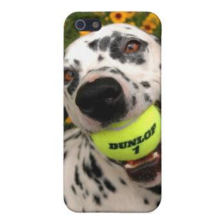 Sting, iphone 4 case