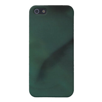 Sting Ray Face iPhone SE/5/5s Case
