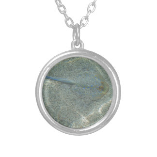 sting ray round pendant necklace