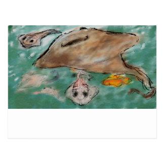 Sting Ray Underwater Postcard