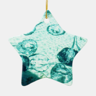 Sting rays in Xcaret - Mexico Ceramic Ornament