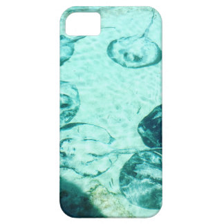 Sting rays in Xcaret - Mexico iPhone SE/5/5s Case