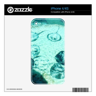 Sting rays in Xcaret - Mexico Skins For The iPhone 4S