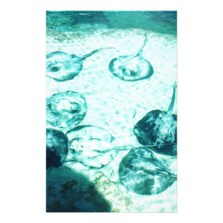 Sting rays in Xcaret - Mexico Stationery