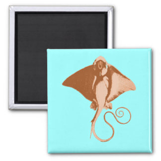 stingray 2 inch square magnet