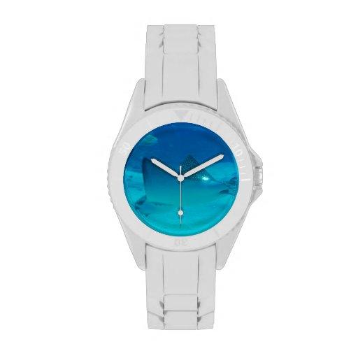 stingray-42.jpg relojes de mano