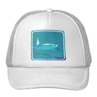 Stingray  Baseball Hat