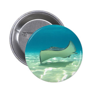 Stingray 2 Inch Round Button