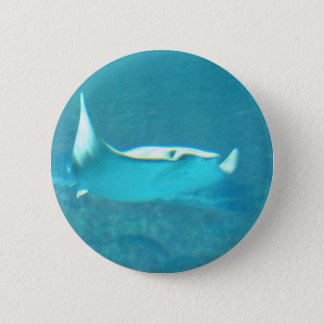 Stingray  Button