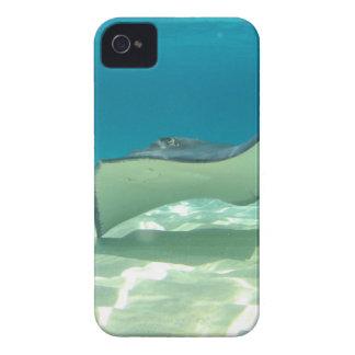 Stingray Case-Mate iPhone 4 Case